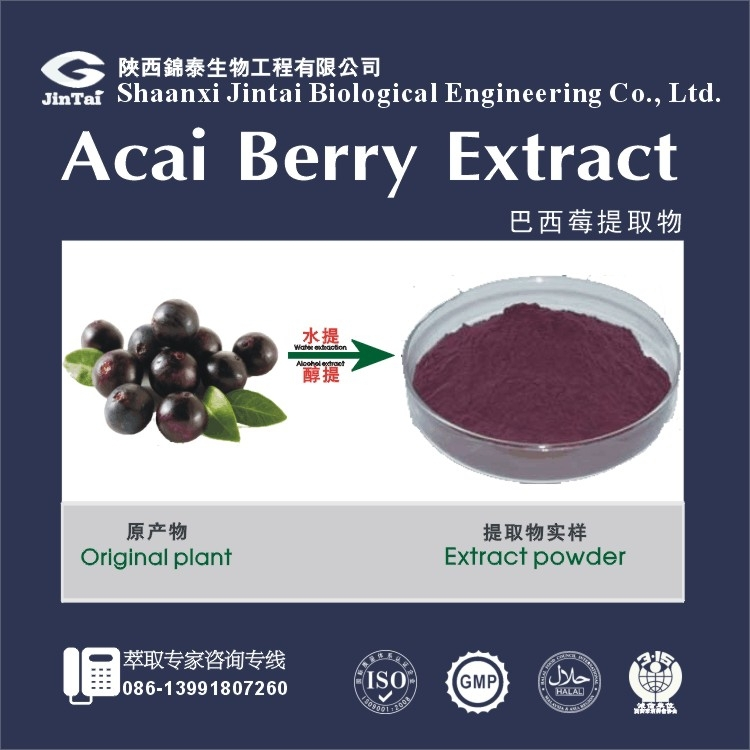 4:1 10:1 TLC Deep purple powder Acai Berry Extract