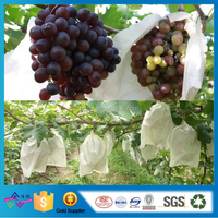 Anti-Ultraviolet Agriculture Nonwoven Fabric High Quality Fruit Protection Bag Grape Bag