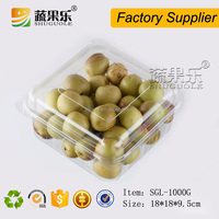 PET Material clear plastic container for fruit and vegetable