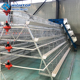 Automatic design layer egg used poultry a-type battery chicken cage