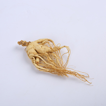 2016 wild ginseng is the year of the sun dried ginseng non fresh ginseng