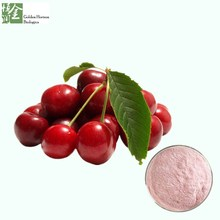 Natural Food Grade Raw Material Acerola Cherry Powder Extract