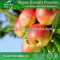 Apple Powder,Dried Apple Powder,Apple Tea Powder