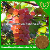No Additives ! ISO longlitian factory provide grape seed extract polyphenols/powdered grape seed extract with Ace Quality ! Hot