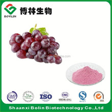 Water Soluble Natural Grape Fruit Flavor White Grape Fruit Juice Concentrate Powder