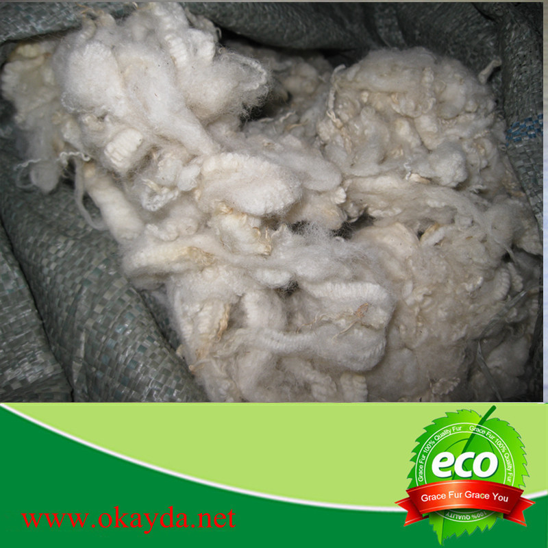 Sheep wool price