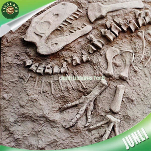 Lisaurus-L392 Real Dragon Fossils on Display in China picture