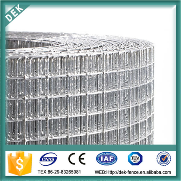 1/4 inch galvanized welded wire mesh/welded wire mesh roll/welded wire mesh fence panels in 6 gauge
