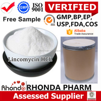 We are the leading High Quality Medical 99% Lincomycin Hydrochloride manufacturer/lincomycin premix