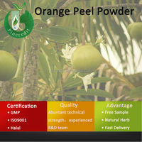 Orange Juice Concentrate Powder/Orange Juice Drink Powder/Orange Peel Powder