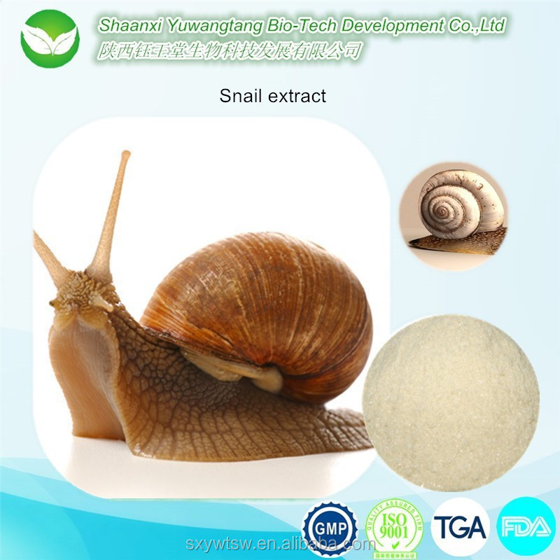 HIgh quality GMP factory bulk producing snail slime/snail powder/snail slime extract whitening skin