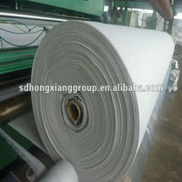 pp/pet composite nonwoven geotextile fabric price by biggest geotextile factory in China