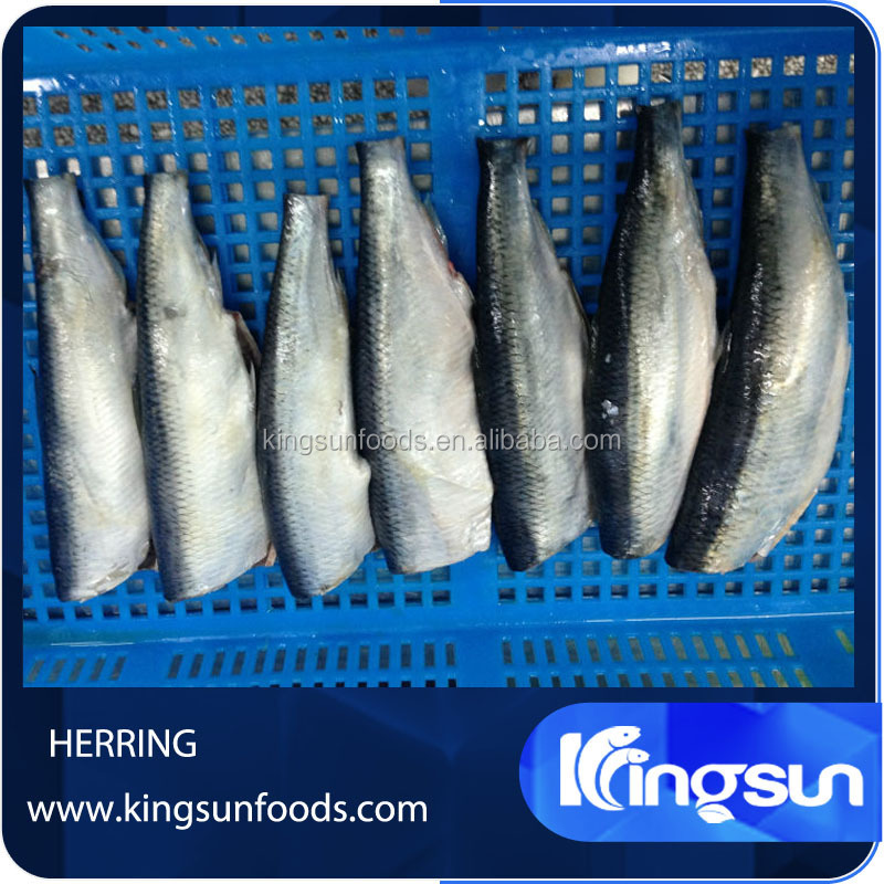 Grade A Fish Herring