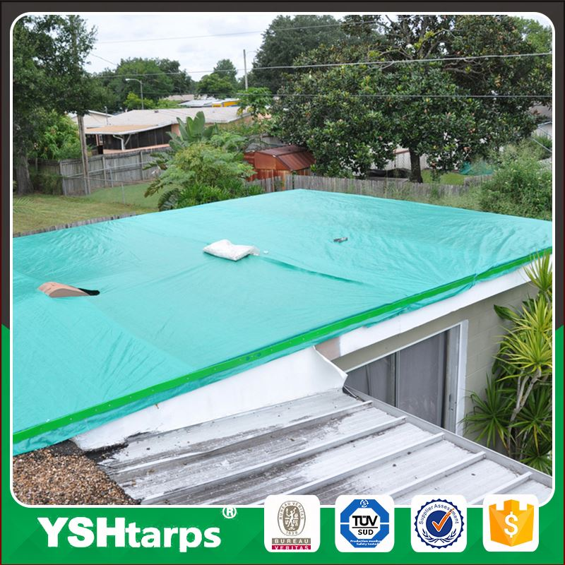 Flexible Green Coated House Tarpaulin Plastic Sheet