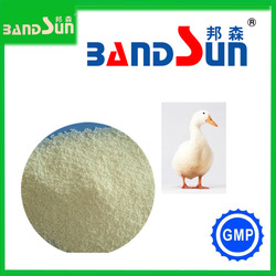 chemical product health care product hot sale sodium butyrate gmp china supplier veterinary meidicine feed additive