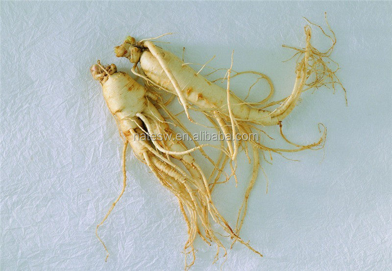 100% Natural Ginseng Root Extract Powder 80%