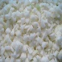FROZEN ONION DICED