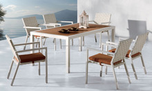 Metal wooden dining table and chair (DH-9727)