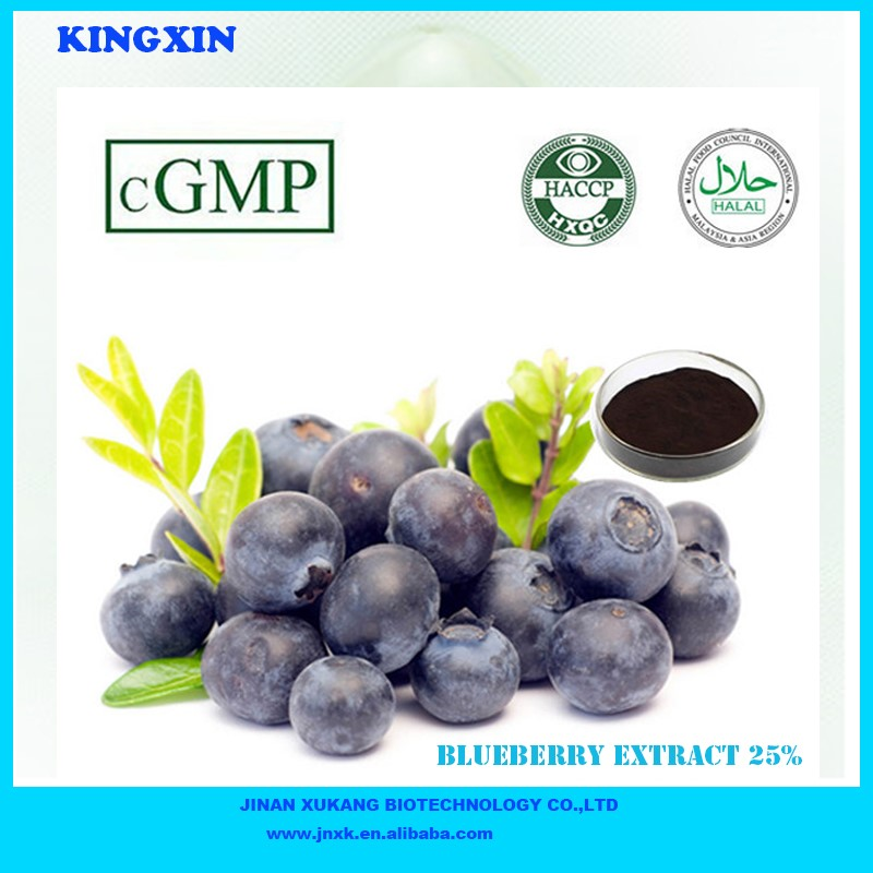 New arrival Plant Extract Blueberry Extract 25%