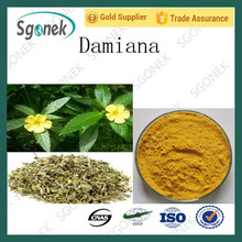 Hot sale Herbal medicine for sex improvement Damiana Extract Powder damiana