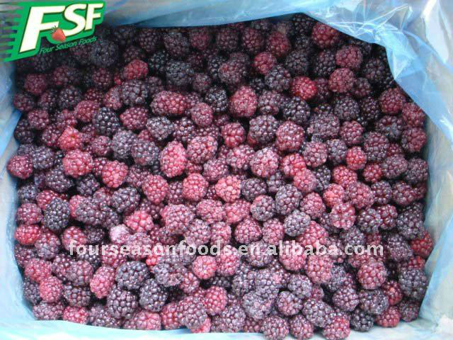 IQF frozen berries black fruit 2015 new price