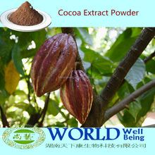 Hot Sell Theobromine10-20% Cocoa Seed Extract Powder/Cocoa Seed Powder/Cocoa Seed Extract