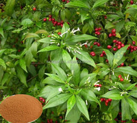 Hot selling plant extract fast speed rauwolfia serpentina extract powder