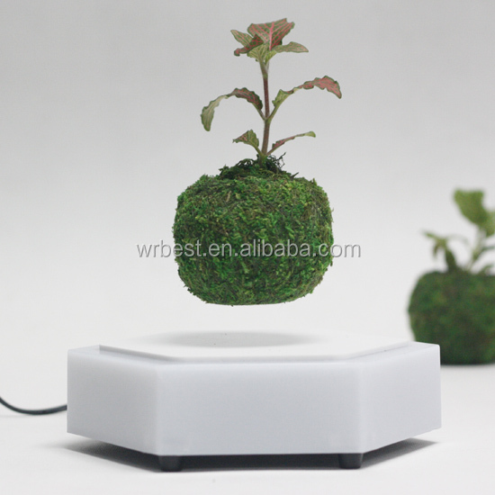 floating air bonsai,gift items indoor mini bonsai plant for home decoration