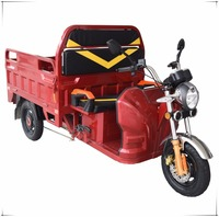 Eec Assisted Electric Tricycle 60V 1000W Strong Powerful e-Trike For Cargo