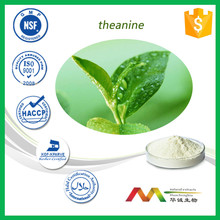 Supplier Natural Green Tea Extract Polyphenols 20% 80% 98%/green tea extract export/green tea weight loss