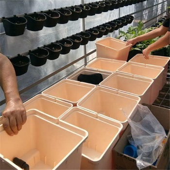 Hot sales cheap price hydroponic dutch bato bucket planting pots