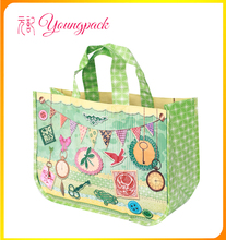Customize High Quality PP Woven Fashion Shopping Bag