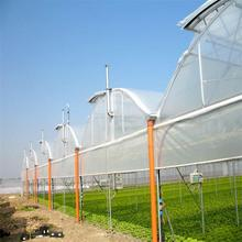 Hot Sale and Easily Installed multi span Industrial Greenhouse
