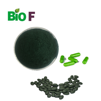 High active ingredient protein Spirulina Powder