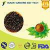 Free sample supported calm the nerves TOP quality Chinese Supplier natural Magnolia-vine Extract HPLC tested