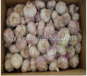 fresh garlic from china 2014 crop