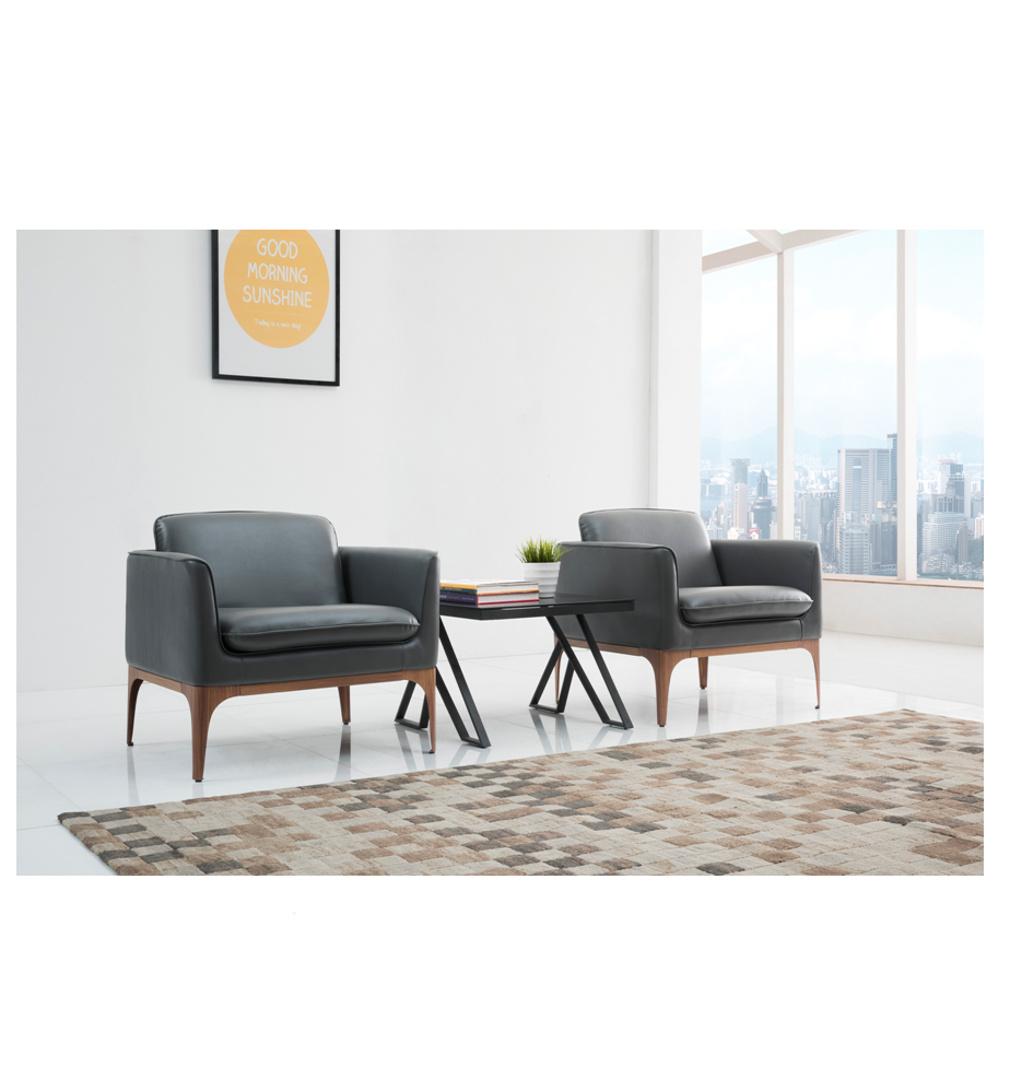 Small Design Wooden Legs Leather Sofa Set For Home And Office