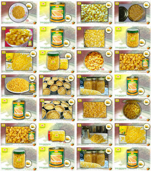 All sweet corn by Thongtan Food
