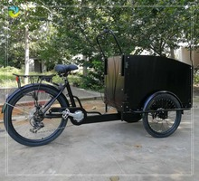 350W electric pedal dutch tricycle cargo trike for pick up