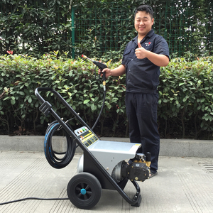 BISON(CHINA) BS2500L 170 Bar 2500 PSI Family Use Portable Gasoline Engine Anlu High Pressure Washer