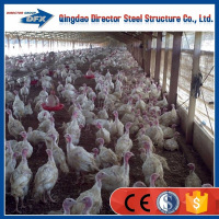 trade assurance light prefabricated steel structure layer broiler chicken house with best price