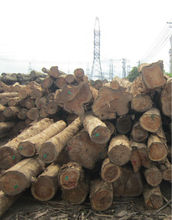 Lao TEAK Wood TIMBER good quality