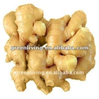 Market Prices For Ginger