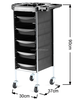 /product-detail/2016-new-coloring-hair-salon-trolley-6-tier-storage-rolling-cart-60265505819.html