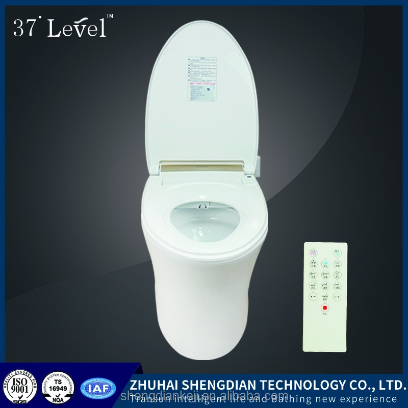 The most intelligentest wc toilet bathroom automatic electric toilet