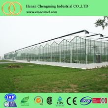 Tomato hydroponic greenhouse for agriculture farm+