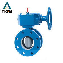 TKFM Chinese supplier 10 inch self closing butterfly valve water with torque calculation dn20