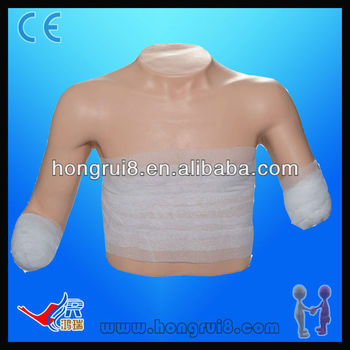 ISO Advanced Bandaging Model of Superior Position, Wound Care Model