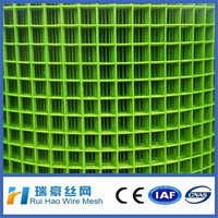 pvc coated 1x1 inch welded wire mesh/welded mesh