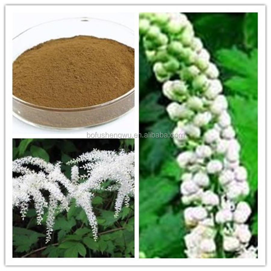 Pure Black Cohosh Root Powder Extract/Natural Black Cohosh Root Powder/Factory Black Cohosh Root Extract Powder